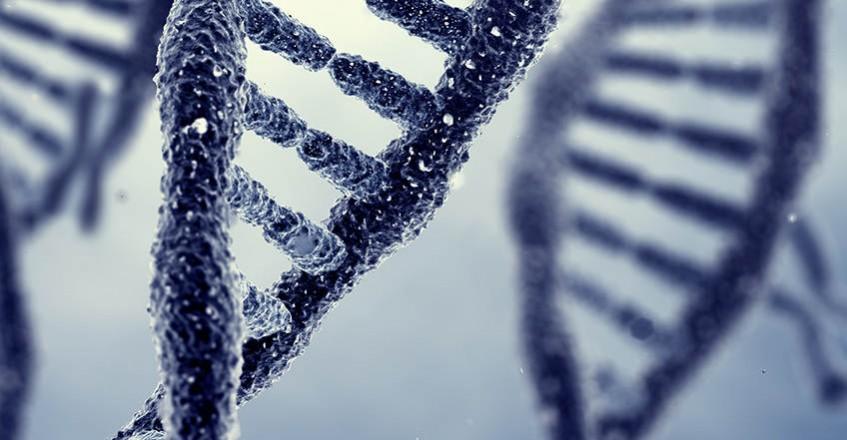 Nowość w ofercie Enel-Med – badania genetyczne